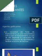 AGENTES-GELIFICANTES