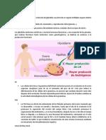 P5-HS-INTRODUCCIÓN-FUNDAMENTO.docx