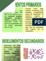 4. Clase Bioelementos