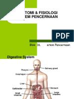 anfis pencernaan-1