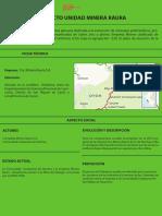 PROYECTO UNIDAD MINERA RAURA.pdf