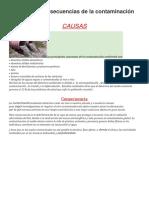 Causas y Consecuencias de La Contaminación