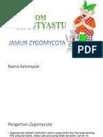 Antiangina Nitrat (Fartok)