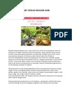 CEPAT BERBUAH..!082-220-228-118, harga anak durian duri hitam, harga anak pokok durian duri hitam semarang