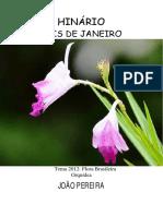 Joao Pereira - Seis de Janeiro