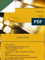 01-LIPIDOS