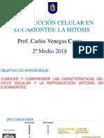Nº5 Ciclo Celular, Mitosis y Meiosis