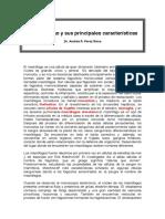 El Macrófago y Sus Principales Características