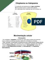 205949-aula_2_organelas.ppt
