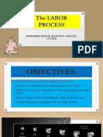 Bien Powerpoint Demo Presentation