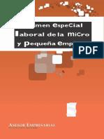 Regimen especial laboral Mype
