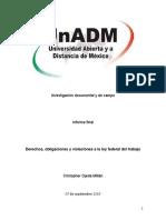 Informe Trabajo Investigacion Universidad