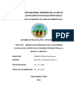 Impactos Ambientales Generados Por La Curtiembre D-leyse, En El Distrito de El Porvenir, Provincia Trujillo, Region La Libertad-converted