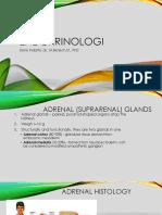 Endocrinologi Part 2 2015