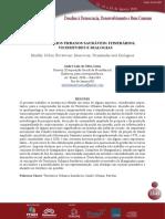 TERRITORIOS URBANOS SAUDAVEIS ITINERARIOS, VICISSITUDES E DIALOGIAS.pdf