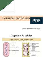 1- Introducao Ao Metabolismo