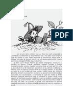 HABARNAM VISEAZA.pdf