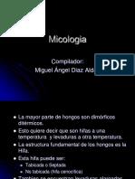 Atlas Micologia