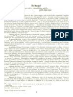 Baltagul-Povestire_pe_capitole.doc