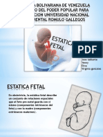 2 expocision obstetricia