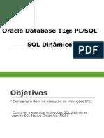 Aula07_SQL_Dinamico