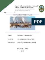 Conflictos Ambientales- Sociedad y Desarrollo