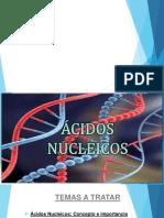 ADN Y ARN.pptx