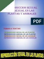REPRODUCCION SEXUAL Y ASEXUAL EN LAS  PLANTAS Y ANIMALES(EXPONER).pptx
