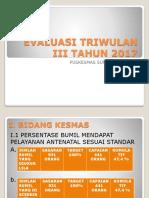 Evaluasi Triwulan III Tahun 2017 (New)