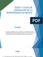 Estrategías y Casos de Conservación de La Biodiversidad