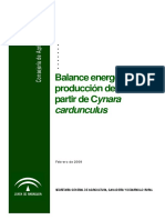 eficiencia_cardo__def_4_junio_09.pdf