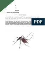 spesies nyamuk