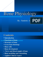 bone physiology