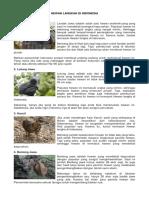 Hewan Langkah Di Indonesia