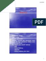 gis_20102011_slide_hernia.pdf