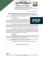 Resolucion Directoral Nª 012- Pat