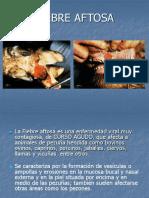 Aftosa signologia, tratamientos  y prevencion de la Enfermedad