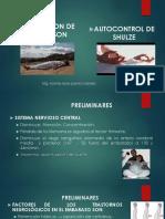 04 Determinismo Del Parto (1)