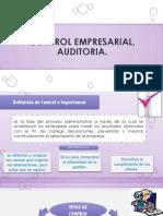Control Empresarial Auditoria