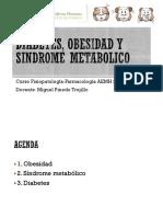 01. Fisiopato Diabetes, Obesidad y Sindrome Metabolico