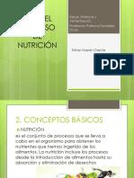 El proceso de Nutrición