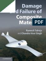 0521819423_Damage.pdf