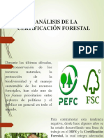 4.Análisis de La Certificación Forestal