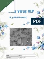 Zika Virus VLP