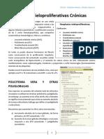 2. NMP Dr. Flores