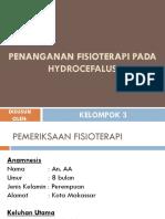 Penanganan Fisioterapi Pada Hydrocefalus