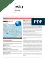 Indonesia Ficha Pais