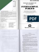 353994591-DERECHO-INTERNACIONAL-PUBLICO-GUIA-ESTUDIO.pdf