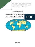 Plamedeala Gheorghe - GEOGRAFIA RAMURILOR ECONOMIEI MONDIALE.pdf