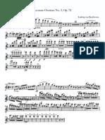 Excertos Flauta